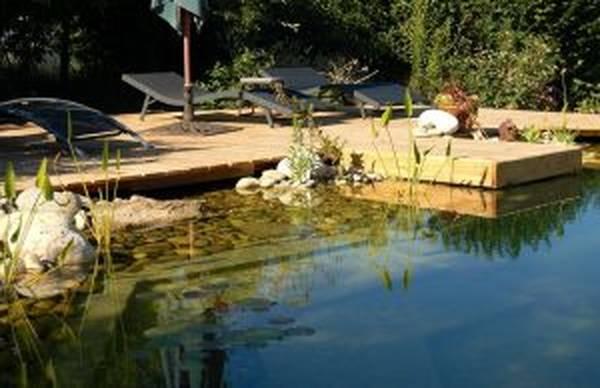 devis piscine beton